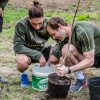 'Green team' Arsenal plants 500-tree wood at training ground