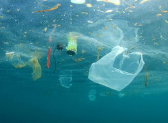 Why sports organisations should take the Clean Seas pledge