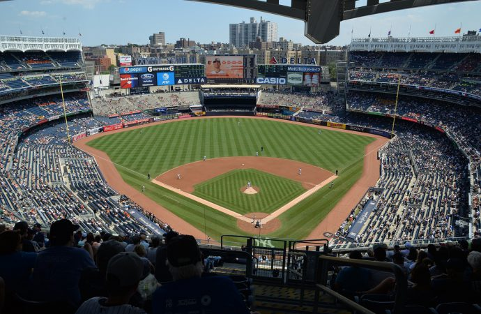 New York Yankees appoint sport's first environmental science advisor