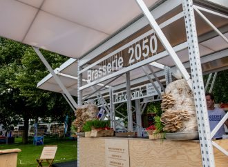 European Equestrian Championships showcase sustainable food concept
